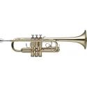 Stagg WS-TR255 C-Trompete im ABS-Koffer