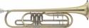 Stagg 77-TBR B-Basstrompete 3 Drehventile im Koffer