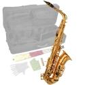 Steinbach Eb Alt-Saxophon in Messing mit hohem FIS