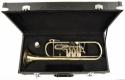 Steinbach Drehventil Trompete in Bb-Stimmung mit Koffer