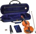 Steinbach 1/8 Geige im SET Ebenholzgarnitur wunderschön geflammt