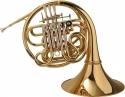 Steinbach F/B-Doppelhorn im Softcase