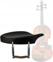 Geigen & Violinen