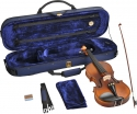 Geige / Violine